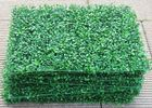 China PE/PU Aglaia Odorata Artificial Plant Wall Green Color 10cm Height factory