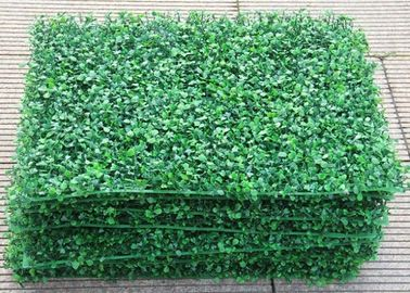 PE/PU Aglaia Odorata Artificial Plant Wall Green Color 10cm Height